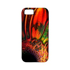 Abstract Of An Orange Gerbera Daisy Apple Iphone 5 Classic Hardshell Case (pc+silicone)