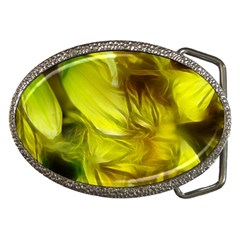 Abstract Yellow Daffodils Belt Buckle (oval)