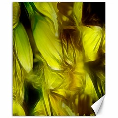 Abstract Yellow Daffodils Canvas 16  X 20  (unframed)