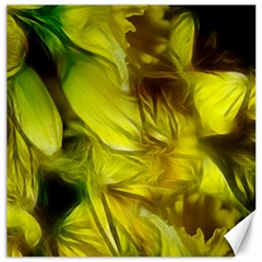 Abstract Yellow Daffodils Canvas 20  x 20  (Unframed)
