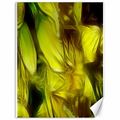 Abstract Yellow Daffodils Canvas 18  x 24  (Unframed)