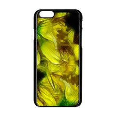 Abstract Yellow Daffodils Apple iPhone 6 Black Enamel Case