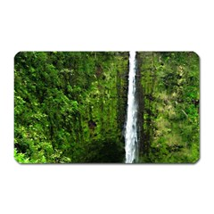 Akaka Falls Magnet (rectangular)