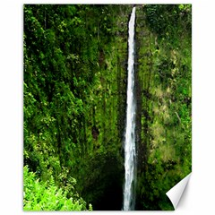 Akaka Falls Canvas 11  x 14  (Unframed)