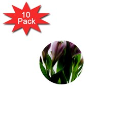 Pink Flowers On White 1  Mini Button (10 Pack)