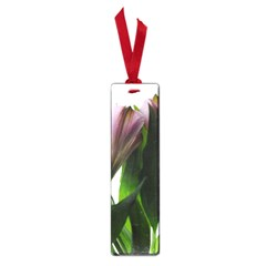 Pink Flowers On White Small Bookmark