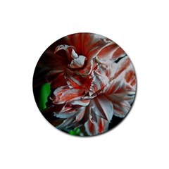 Amaryllis Double Bloom Drink Coaster (round)