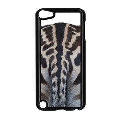 Zebra Butt Apple iPod Touch 5 Case (Black)