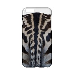 Zebra Butt Apple iPhone 6 Hardshell Case