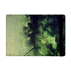 Abstract7a Apple iPad Mini 2 Flip Case