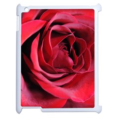 An Open Rose Apple Ipad 2 Case (white)