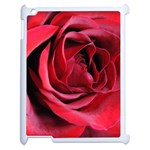 An Open Rose Apple iPad 2 Case (White) Front