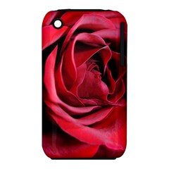 An Open Rose Apple iPhone 3G/3GS Hardshell Case (PC+Silicone)