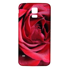 An Open Rose Samsung Galaxy S5 Back Case (White)