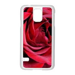 An Open Rose Samsung Galaxy S5 Case (White)