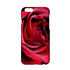An Open Rose Apple iPhone 6 Hardshell Case
