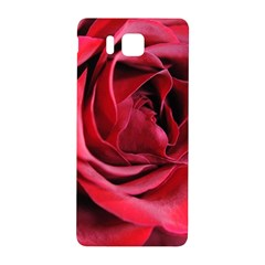 An Open Rose Samsung Galaxy Alpha Hardshell Back Case