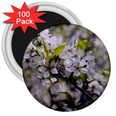 Apple Blossoms 3  Button Magnet (100 Pack)