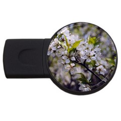 Apple Blossoms 4gb Usb Flash Drive (round)