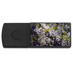 Apple Blossoms 4gb Usb Flash Drive (rectangle)