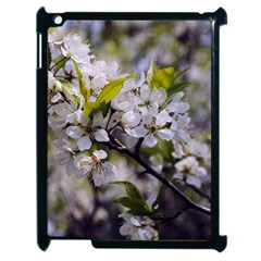 Apple Blossoms Apple Ipad 2 Case (black)