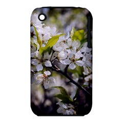 Apple Blossoms Apple iPhone 3G/3GS Hardshell Case (PC+Silicone)