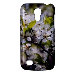 Apple Blossoms Samsung Galaxy S4 Mini (gt I9190) Hardshell Case