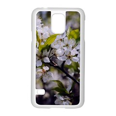 Apple Blossoms Samsung Galaxy S5 Case (White)