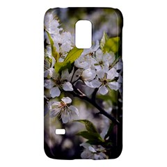 Apple Blossoms Samsung Galaxy S5 Mini Hardshell Case