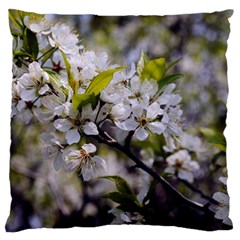 Apple Blossoms Large Flano Cushion Case (one Side)