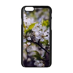 Apple Blossoms Apple iPhone 6 Black Enamel Case