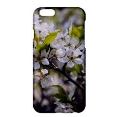 Apple Blossoms Apple iPhone 6 Plus Hardshell Case