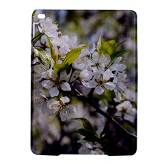 Apple Blossoms Apple Ipad Air 2 Hardshell Case