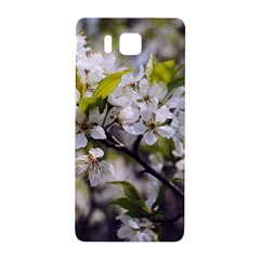 Apple Blossoms Samsung Galaxy Alpha Hardshell Back Case