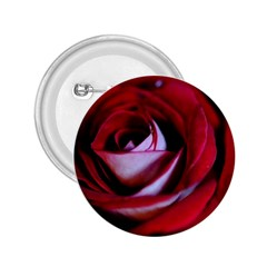 Red Rose Center 2 25  Button