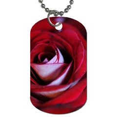 Red Rose Center Dog Tag (two Sided)