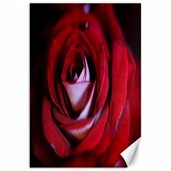 Red Rose Center Canvas 20  x 30  (Unframed)