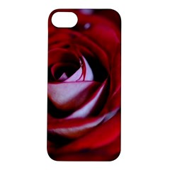 Red Rose Center Apple iPhone 5S Hardshell Case