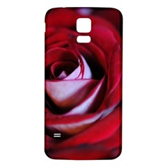 Red Rose Center Samsung Galaxy S5 Back Case (white)