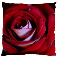 Red Rose Center Standard Flano Cushion Case (one Side)