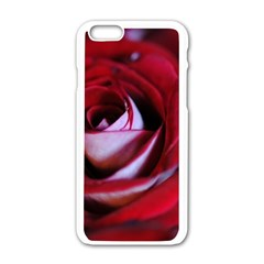 Red Rose Center Apple iPhone 6 White Enamel Case