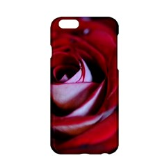 Red Rose Center Apple iPhone 6 Hardshell Case