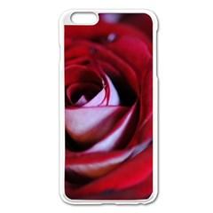 Red Rose Center Apple Iphone 6 Plus Enamel White Case