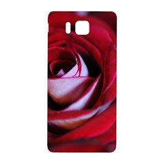 Red Rose Center Samsung Galaxy Alpha Hardshell Back Case