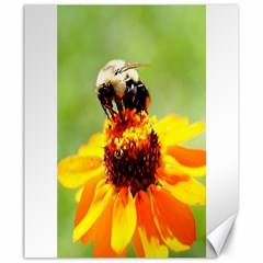 Bee On A Flower Canvas 20  X 24  (unframed)