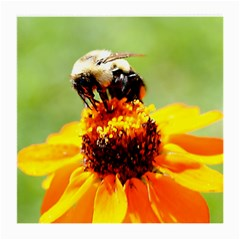 Bee On A Flower Glasses Cloth (medium, Two Sided)