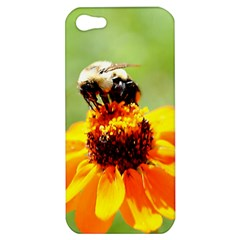 Bee On A Flower Apple Iphone 5 Hardshell Case