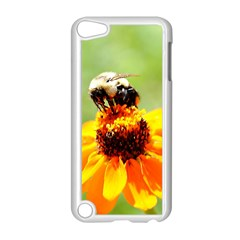 Bee On A Flower Apple Ipod Touch 5 Case (white)