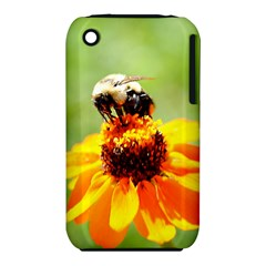 Bee on a Flower Apple iPhone 3G/3GS Hardshell Case (PC+Silicone)