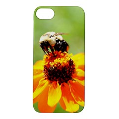 Bee On A Flower Apple Iphone 5s Hardshell Case
